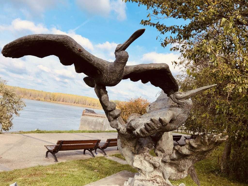 Things to do and discover Silistra - the apricot paradise of Bulgaria - Pelican Sculpture