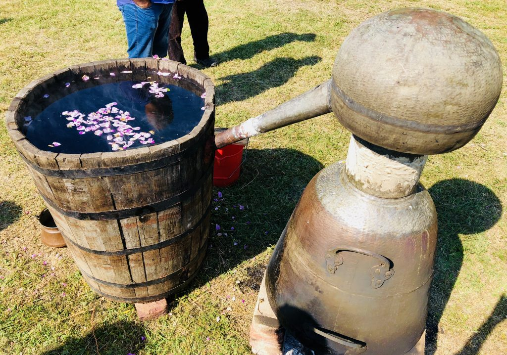 Rose oil extraction ritual, Festival of Roses in Kazanlak