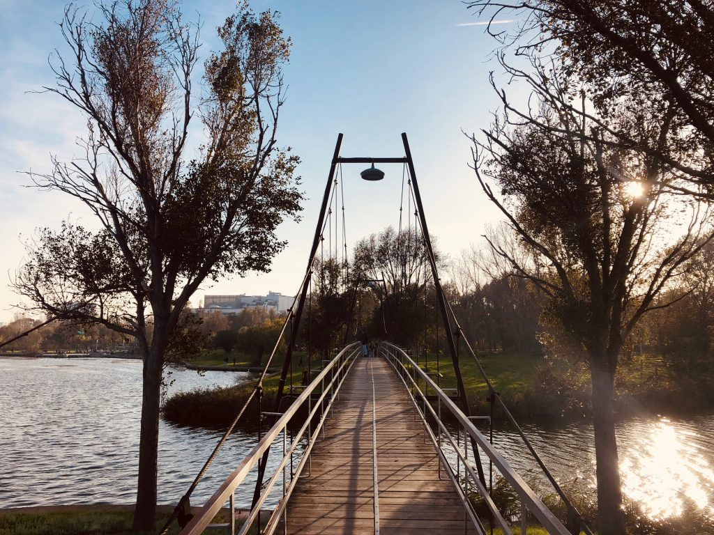 Mamaia city park