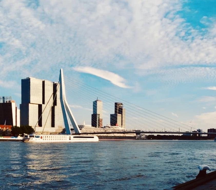 Destination Rotterdam, the most modern city in the Netherlands - Erasmus Bridge