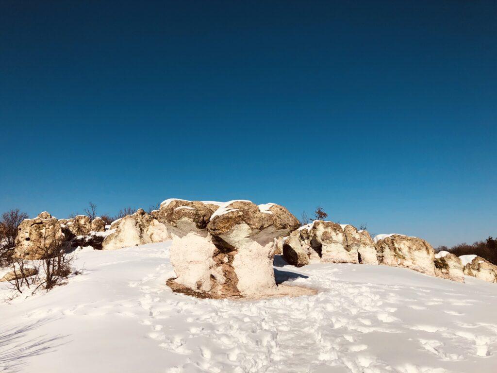 Stone Mushrooms Beli Plast village